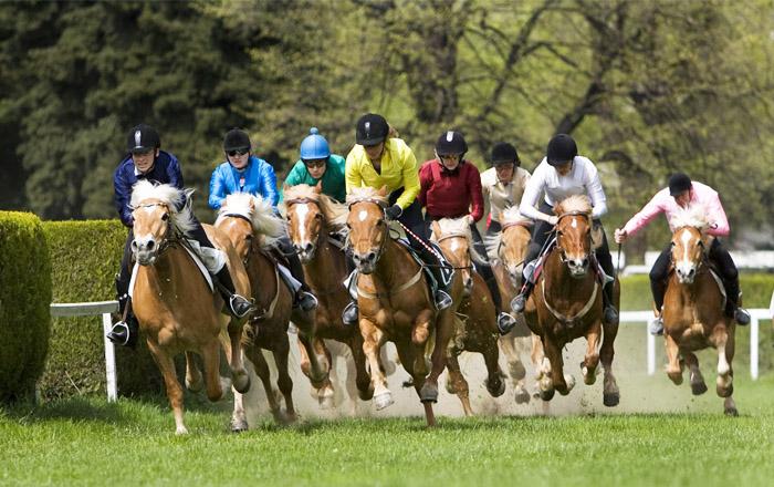 LandYachting Pferderennen